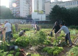 Agricoltura biologica e Orti Urbani